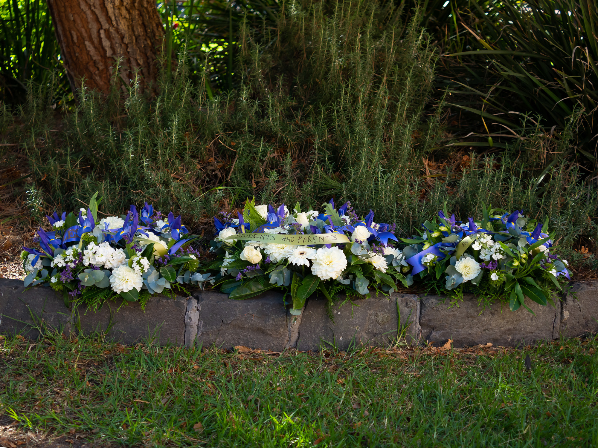The three wreaths laid under the lone pine tree at Dandenong High School