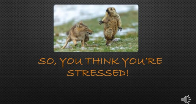 Mental Health Awareness Week - So You Think You're Stressed
